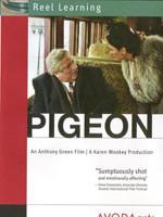 PIGEON-150x200